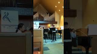 Vivaldi concerto in a minor for two violins