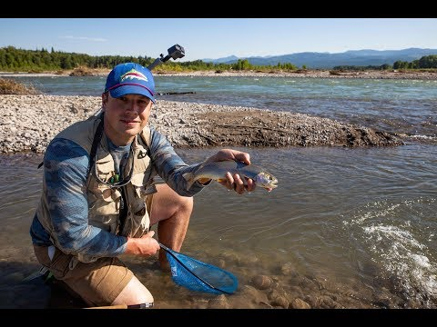 5 Native Cutthroat Trout In 10 Days! | Fly Fishing The Rockies