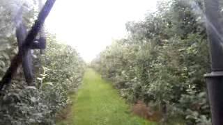 opryskiwanie sadów