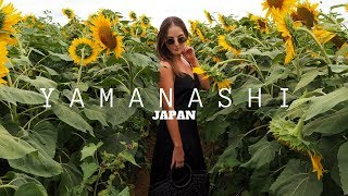 Gambar cover GIRLS TRIP TO YAMANASHI JAPAN FOR MY BDAY