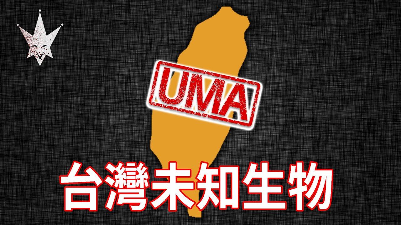 【UMA檔案】台灣未知生物 - 「台中秘獸、屏東怪物、金門海怪、花蓮野人」,曾出現在新聞報導中的台灣UMA。