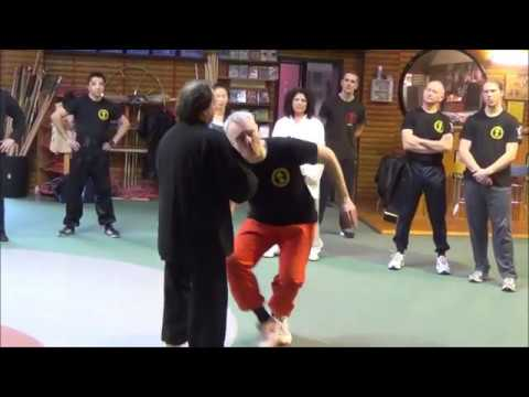 Grandmaster Walter Toch with Chin Na on his workshop 2015 Belgium