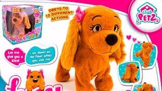 видео Интерактивные игрушки для девочек