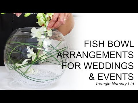 Different Variations Of Fish Bowl Flower Arrangements (Facebook Live Video)