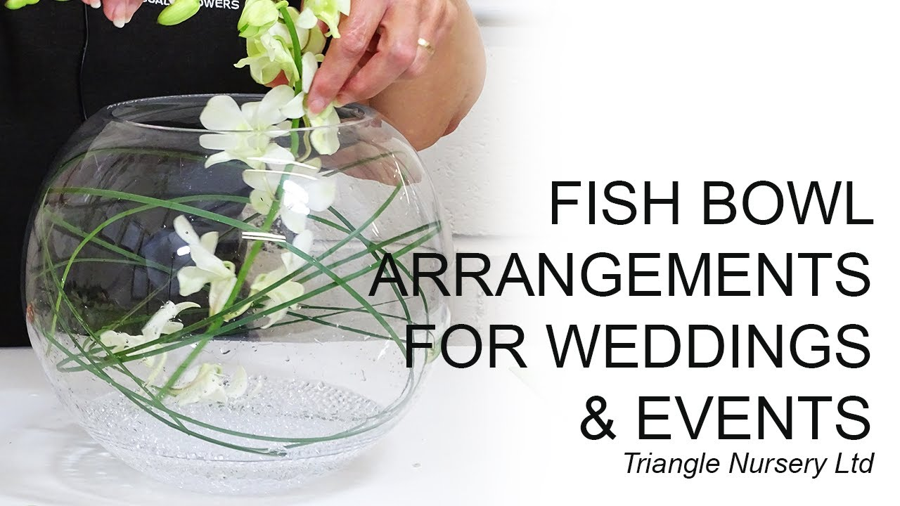 Different Variations Of Fish Bowl Flower Arrangements Facebook Live Video