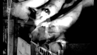 """Fieberflug """" Pestmaske 3 """" excerpt"""