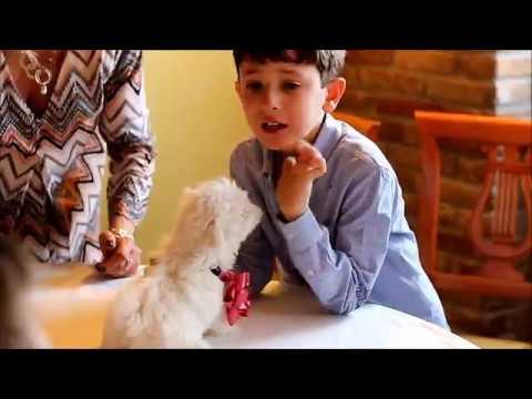 L' emozione nel ricevere per regalo, un cucciolo.