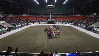 OHA Driven Drill Team MA Equine Affaire Fantasia 2018