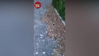 Manduria, Piazza Medaglie d'Oro, la denuncia di stato di abbandono