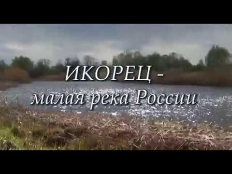 Лискинский район село Средний Икорец  р.Икорец