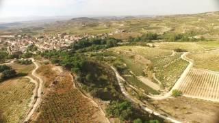 Vendimias a vista de pájaro: Bodegas Amaren ( D.O.Ca Rioja)