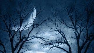 月/桑田佳祐 遠く遠く 海へと下る 忍ぶ川のほとりを歩き 果ての街に た...