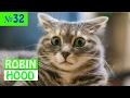 ПРИКОЛЫ 2017 с животными. Смешные Коты, Собаки, Попугаи // Funny Dogs Cats Compilation. Февраль №32