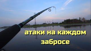 Эта приманка точно ЛОВИТ Поклёвки на каждом забросе Рыбалка летом в жару