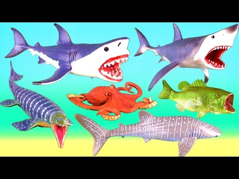 Learn Sea Animals - Learning Sea Animal names for kids, children, toddlers - Sharks Whales Kids Toys