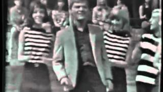 Brian Hyland - The Joker Went Wild