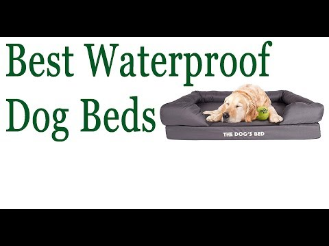 best-washable-dog-beds-||-waterproof-dog-bed,-american-washable-dog-beds