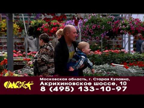 В садовых центрах Флос грандиозная распродажа скидка до 50%