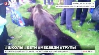 На перемене дети пытались погладить убитого медведя