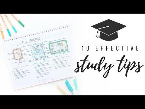 10 effective study tips | studytee