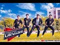 Urvashi song | Dance video | Yo Yo Honey Singh | #KaushalAnchara  | Vengaboys Dance Academy