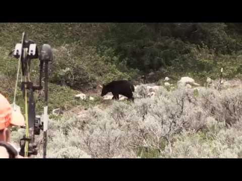 Eastmans' Hunting TV - Bowhunting Spring Black Bears in Wyoming - Outdoor Channel
