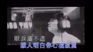 葉振棠&劉德華《戲劇人生》 MV