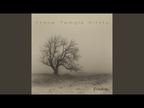 Shannon The Dude - Stone Temple Pilots Release New Song Three Wishes