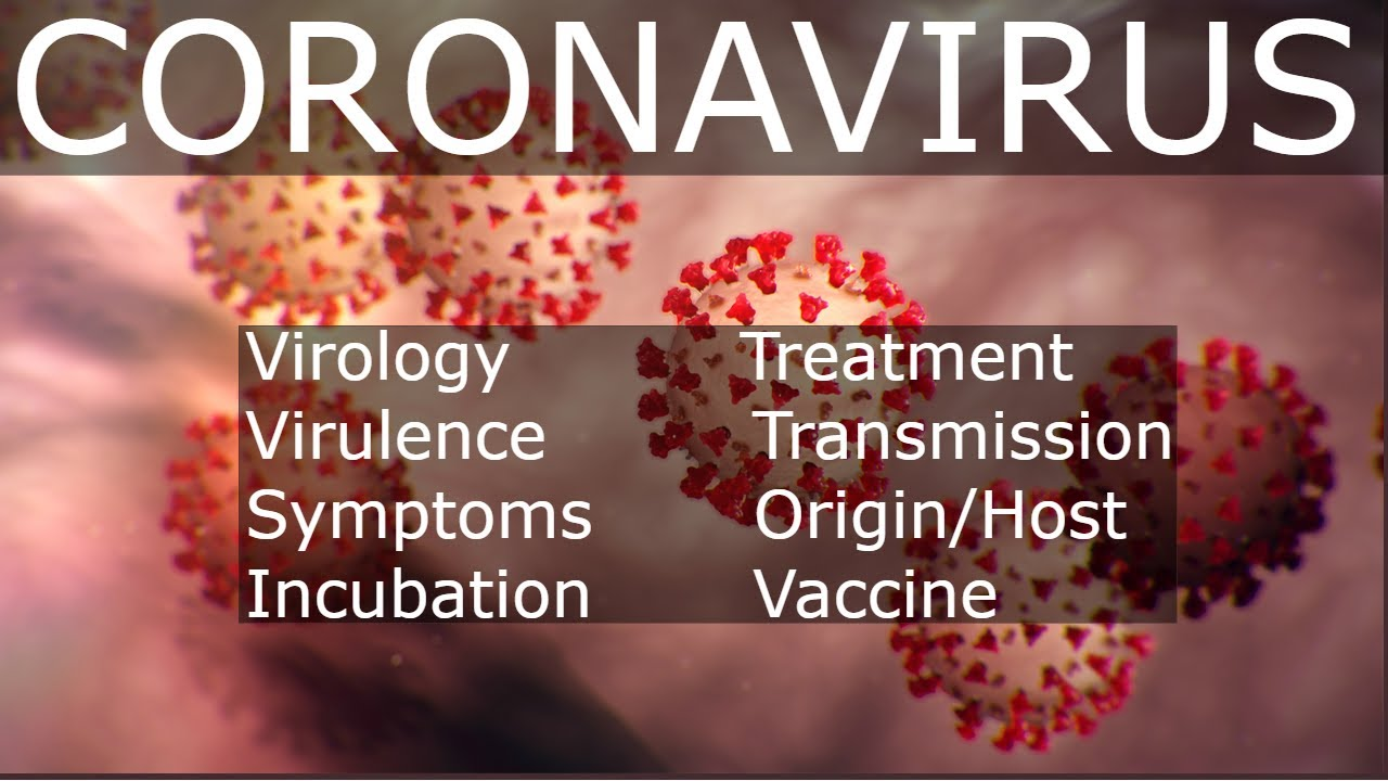 Coronavirus Disease 2019 (COVID-19) - YouTube