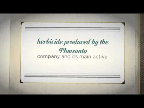 Top Cancer Causing Food GMO's