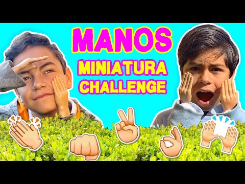 Extreme Challenges with Miniature Hands - Gabo and Gael