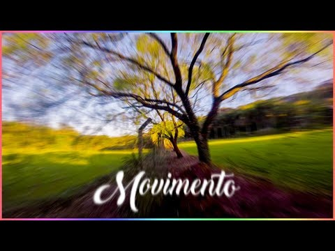 MOVIMENTAÇÃO - FREESTYLE | MOVEMENT - FREESTYLE