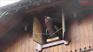 Weltgrößte Kuckucksuhr, Schwarzwald- World