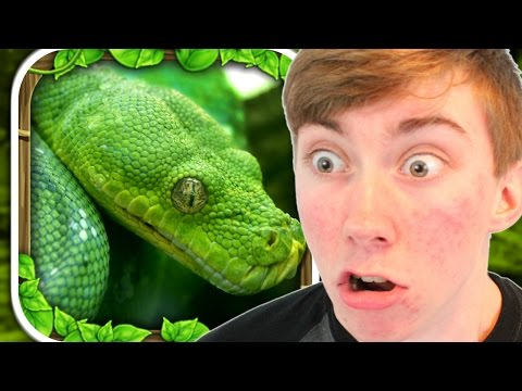 SNAKE SIMULATOR (iPad Gameplay Video)
