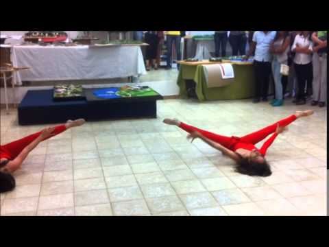 Coreografia Dance Without You