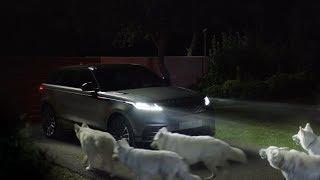 Range Rover Velar commercial -