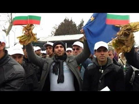 Bulgarie : des producteurs de tabac en colère