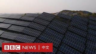 中國以驚人速度興建太陽能電廠 為何煤炭發電仍是主流?- BBC News 中文