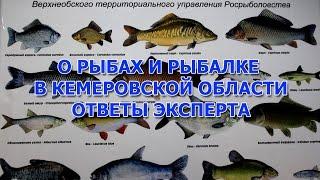 О рыбах и рыбалке в Кемеровской области ответы эксперта