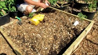 My Community Plot 2016 E-6: Building & Filling Raised Beds, Asparagus Transplants,  An Organic Feed