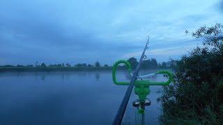 Ловля леща на фидер в июне, на Москве реке.