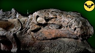 5 Animales Prehistóricos Encontrados Congelados.