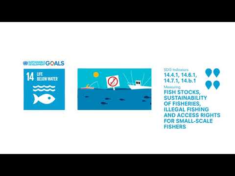 SDG 14 -  Indicators Of Fish Stocks, Sustainability Of Fisheries, And Illegal Fishing