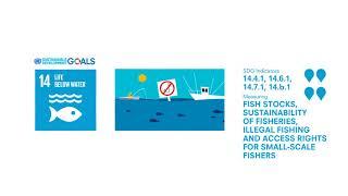 SDG 14 -  Indicators of fish stocks, sustainability of fisheries, and illegal fishing