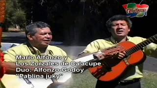 "Los Zorzales De Ca'acupe Videoclips Dúo Alfonzo Godoy CHE MOPIRÎ NDE REVIRO'O"""
