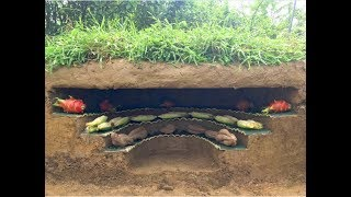 Primitive technology : Build the most beautiful underground refrigerator | build a refrigerator
