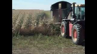 chopping corn silage saskatchewan canada