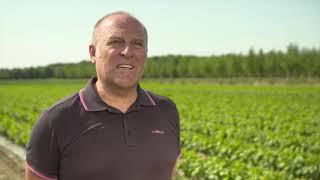 La sinergia tra Novamont e Compo Expert per un'agricoltura sostenibile