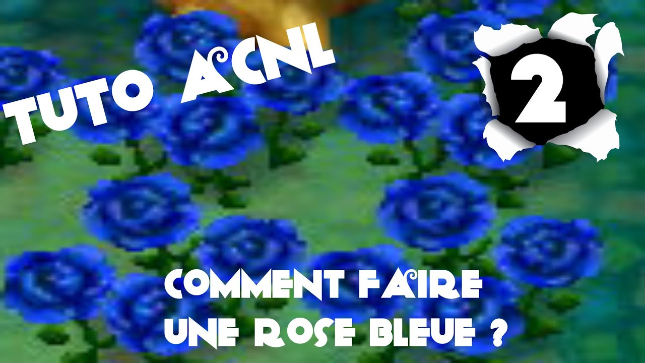 tuto 2 acnl comment faire une rose bleue vid o nocturne youtube. Black Bedroom Furniture Sets. Home Design Ideas