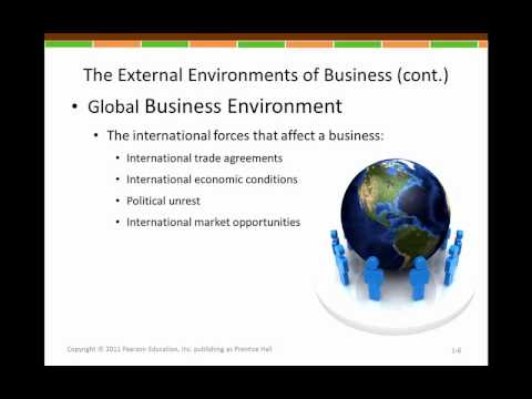 U.S. Business Environment (Part 1) | Episode 3
